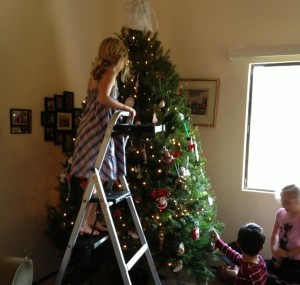 My niephlings descending on the tree