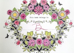 Barbarellas-Coloring-Book-for-Adults_t658